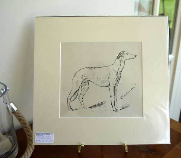 Greyhound  - Gre D7 - 1940's print by Lucy Dawson